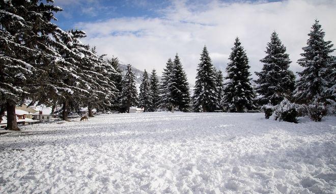 Χιονισμένο Μέτσοβο (φωτογραφία αρχείου) EUROKINISSI