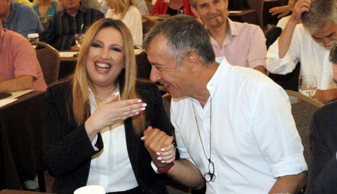 Η Φώφη Γεννηματά και ο Σταύρος Θεοδωράκης κατά παλαιότερη συνεδρίαση της ΚΕ του Κινήματος Αλλαγής