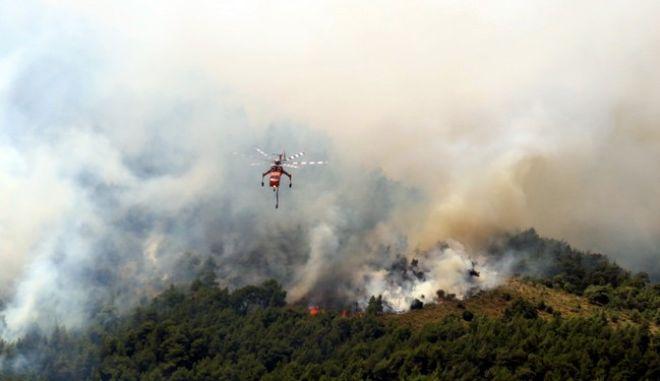 Πυρκαγια σε δασική έκταση στην Βοιωτία στα Δερβενοχώρια,στην περιοχη Στεφάνη,δυτικα της Πάρνηθας.Απο το πρωί επιχειρούν ισχυρές δυνάμεις της πυροσβεστικής από εδάφους και από αέρος,Κυριακή 26 Ιουνίου 2016 (EUROKINISSI/ΑΝΤΩΝΗΣ ΝΙΚΟΛΟΠΟΥΛΟΣ)