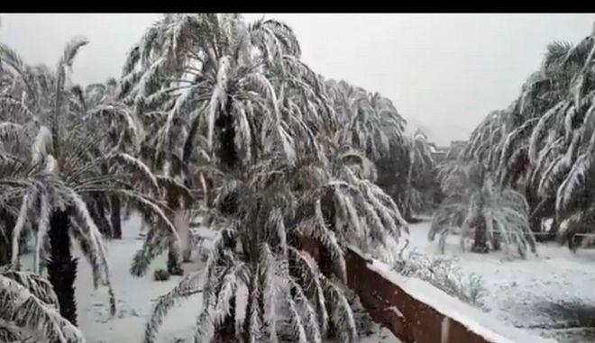 Ο καιρός τρελάθηκε: Χιόνισε στην έρημο στο Μαρόκο