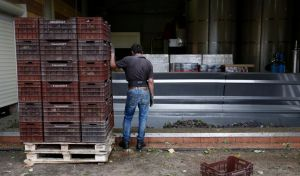 Εργαζόμενος σε οινοποιείο