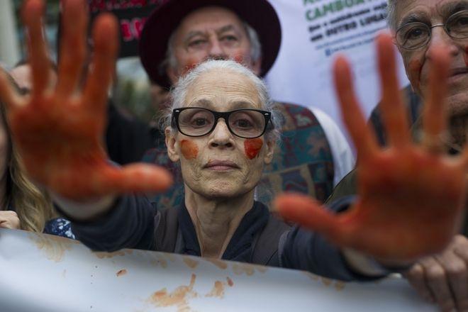 Διαδηλώσεις για τον Αμαζόνιο