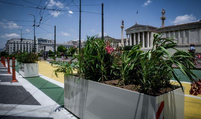 Τοποθετήθηκαν ζαρντινιέρες με λουλούδια,κατά μήκος της διαδρομής του Μεγάλου Περιπάτου της Αθήνας στην οδό Πανεπιστημίου
