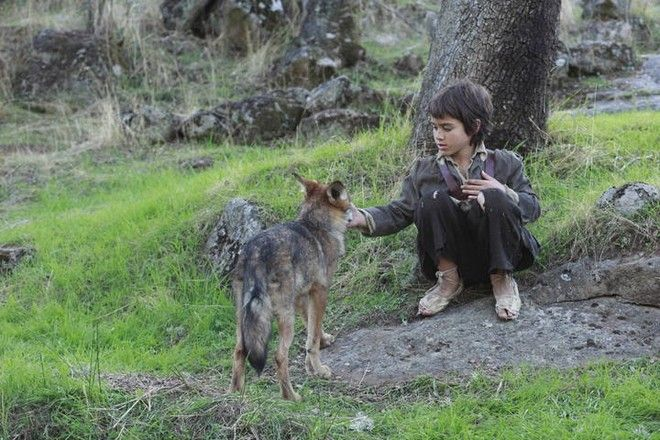 Ο Μάρκος Ροντρίγκεζ Παντόγια μεγάλωσε δίπλα σε λύκους και ακόμα δεν καταλαβαίνει τους ανθρώπους