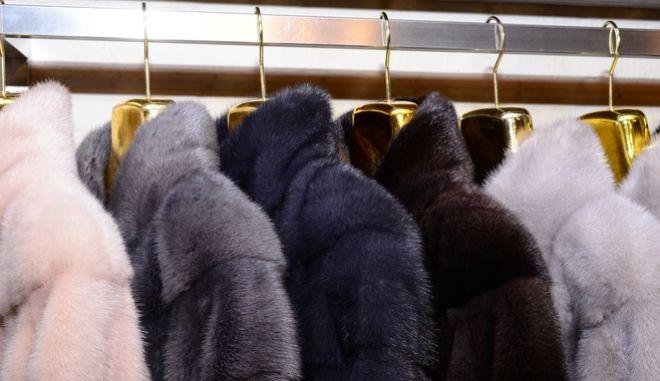 Γούνα 'εμποτισμένη' με χρυσό 24 καρατίων παρουσιάστηκε στην Καστοριά