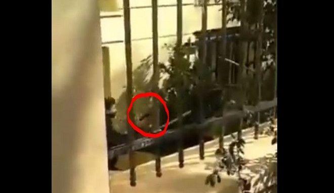 Οι δυο εκδοχές για τον αστυνομικό με το όπλο στην ΑΣΟΕΕ και οι κίνδυνοι που ελλοχεύουν