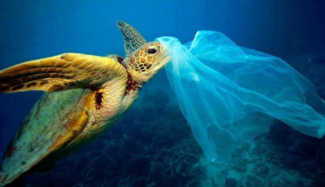 Το 2050 οι ωκεανοί θα έχουν περισσότερα πλαστικά παρά ψάρια