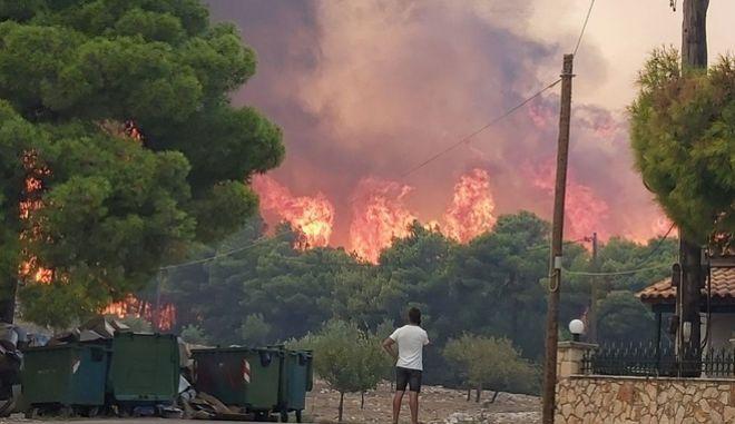 Από την πυρκαγιά στη Ζάκυνθο.