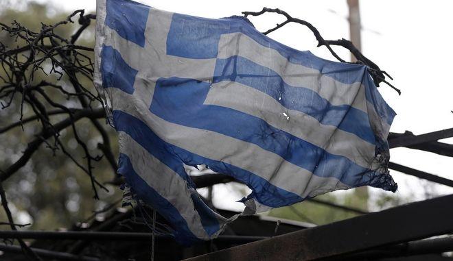 Η ελληνική σημαία λιωμένη πάνω στα κλαδιά απανθρακωμένου δάσους στην Αττική