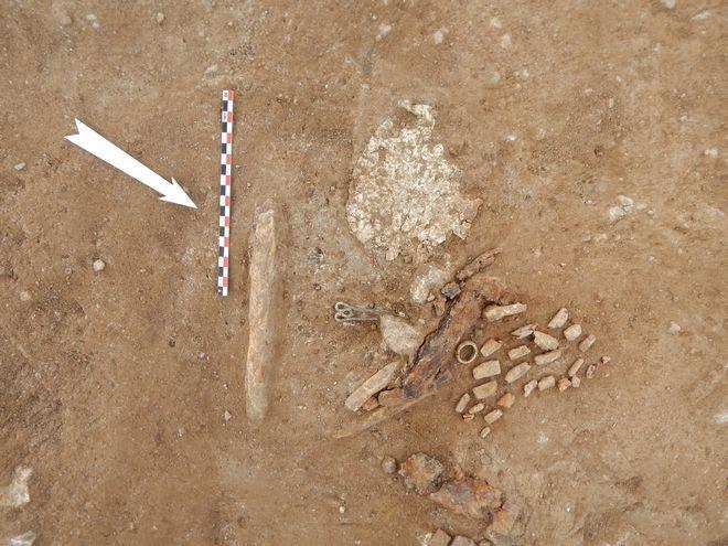 Εντυπωσιακά ευρήματα στον αρχαιολογικό χώρο της Αχλάδας Φλώρινας.