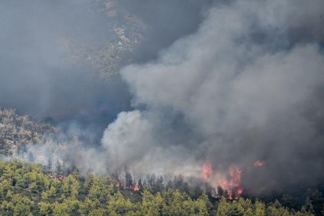 Βίλια: Συνεχίζεται η μάχη με τις φλόγες στο πυκνό πευκοδάσος