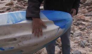 Τεράστιος λευκός καρχαρίας επιτέθηκε σε 15χρονη- Αγωνιώδης προσπάθεια διάσωσης από τον πατέρα της