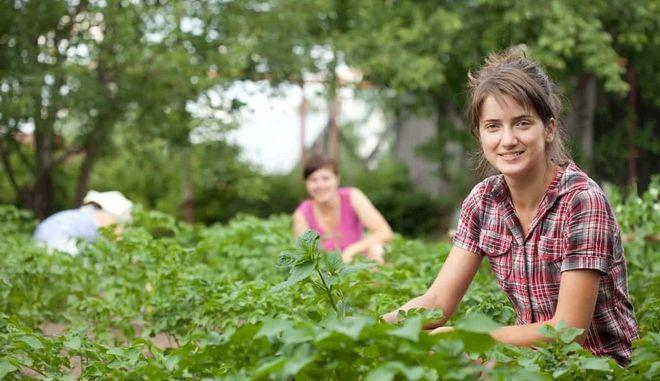 1.731 νέοι αγρότες της Δ. Ελλάδας στο ΠΑΑ 2014-2020