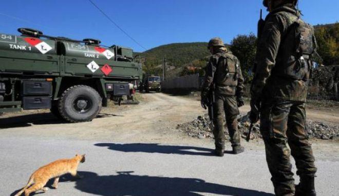 Στρατιωτική γιατρός έσωσε μια γάτα και την περνάνε από στρατοδικείο