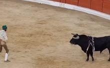 Βίντεο: Προκάλεσε τον ταύρο με γυμνά χέρια και εκείνος τον σκότωσε