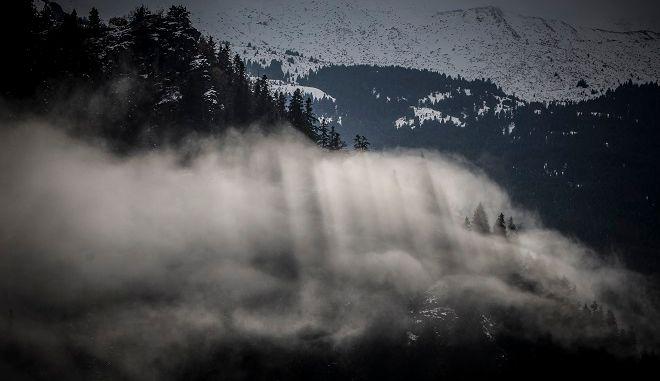 Φωτό αρχείου: Σύννεφο ομίχλης καλύπτει μέρος του ελατόδασους στο Περτούλι Τρικάλων