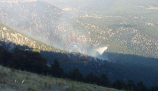 Σε ύφεση η μεγάλη φωτιά στον Κιθαιρώνα