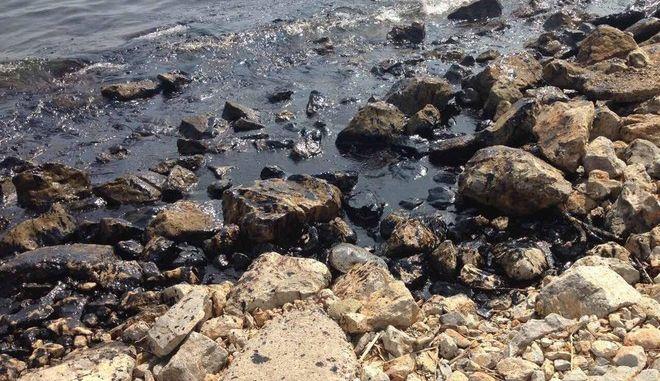 Αποκαλυπτικά βίντεο από την τεράστια περιβαλλοντική καταστροφή στη Σαλαμίνα