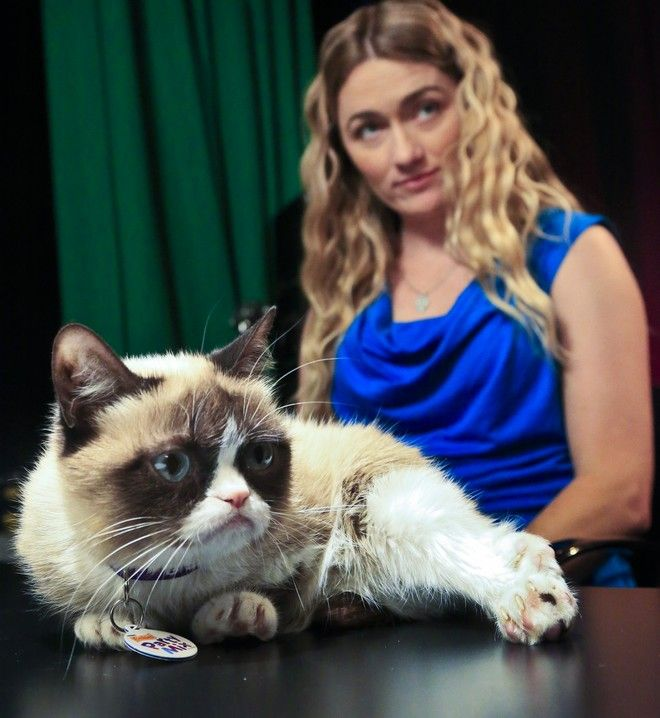 Tabatha Bundesen and her cat, Grumpy Cat, whose real name is Tardar Sauce, prepare for an interview on Friday April 4, 2014 in New York.  Bundesen says that Grumpy Cat's permanently grumpy-looking face is due to feline dwarfism.  (AP Photo/Bebeto Matthews)