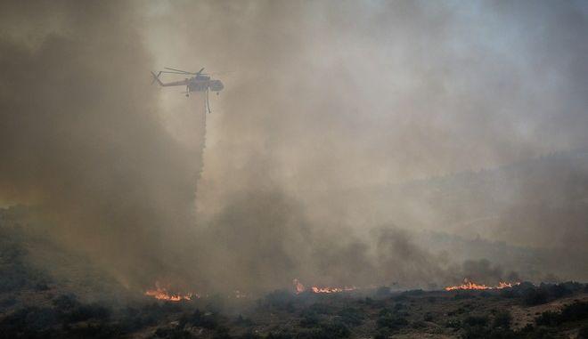 Στιγμιότυπο από την πυρκαγιά στην Εύβοια,στην περιοχή Αυλωνάρι Αλιβερίου.