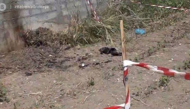 Έγκλημα στην Κατερίνη: Έκαναν μαζί χρήση, τον μετέφερε στο κοιμητήριο, τον σκότωσε και τον έκαψε