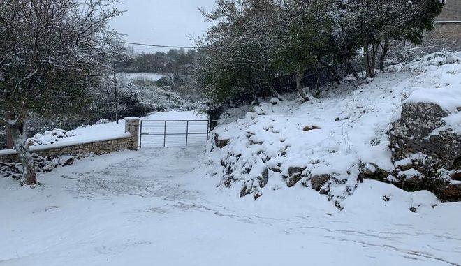 Κακοκαιρία Μήδεια: Χιόνια στο χωριό Καρυά