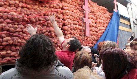 Εξήντα τόνοι πατάτας, προσφορά της ΕΑΣ Νάξου στο Καματερό