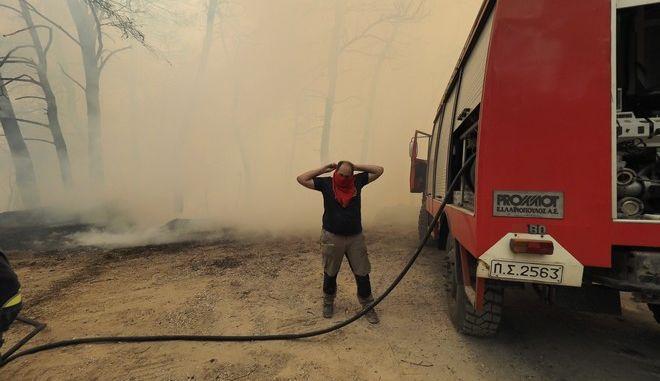 Πυροσβέστης στην Εύβοια
