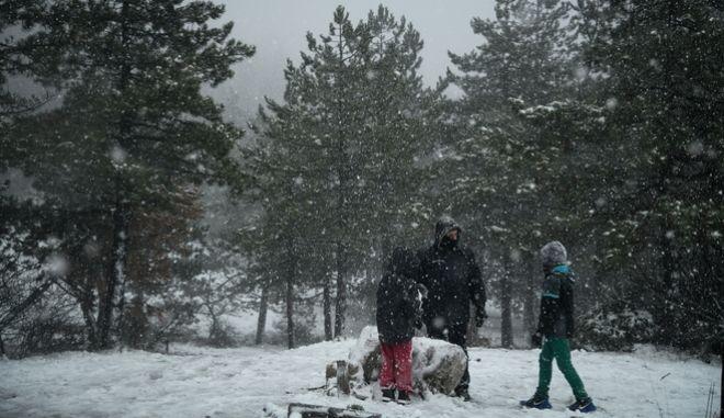Χιονόπτωση στην Πάρνηθα.
