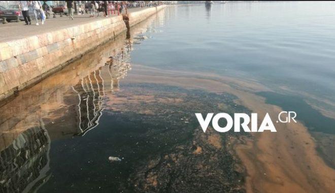 Θεσσαλονίκη: Ο Θερμαϊκός έγινε ξανά καφέ