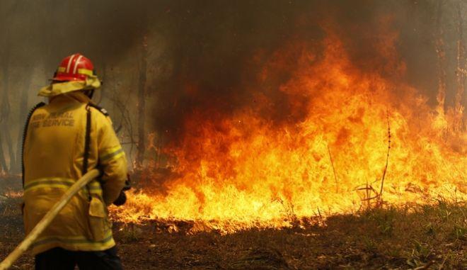 Μάχη με τις φλόγες δίνουν οι πυροσβέστες.