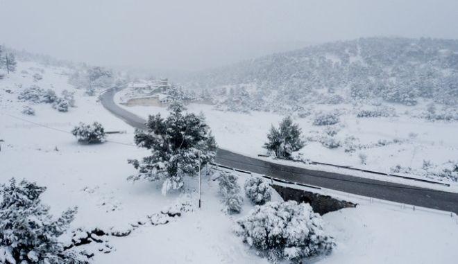 Εικόνα από τα χιονισμένα Βίλια Αττικής (Αρχείο)