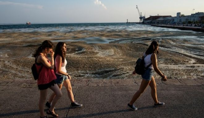 Intense presence of the eutrophication phenomenon in the seafront of Thessaloniki, Greece on June 27, 2017. /           , 27  2017.