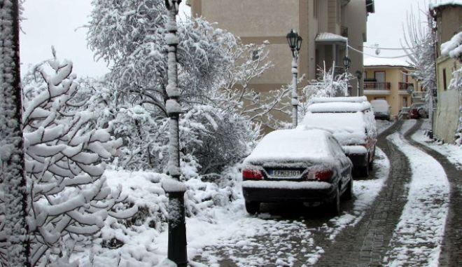 Χιονόπτωση στην πόλη της Κοζάνης το Σάββατο 7 Μαρτίου 2015. (EUROKINISSI/KOZAN.GR)