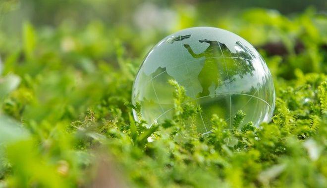 11367195 - green world