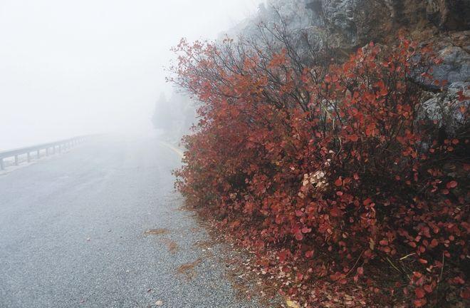 Εικόνες από τη φθινοπωρινή Πάρνηθα