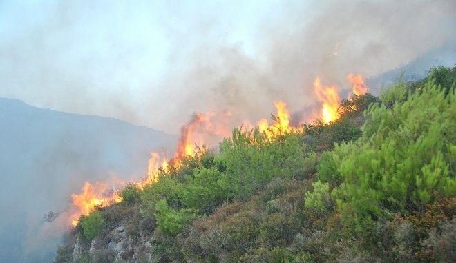 Στιγμιότυπα από τα μέτωπα των πυρκαγιών των τελευταίων ημερών. Τετάρτη 16 Αυγούστοτ 2017. (EUROKINISSI / ΗΜΕΡΑ ΖΑΚΥΝΘΟΥ)