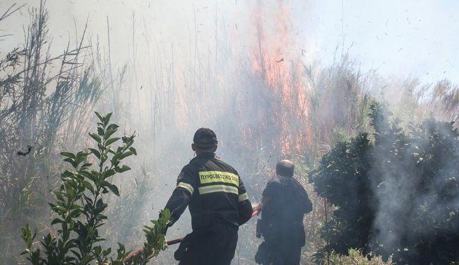 Φωτιά ξέσπασε στους Μύλους Αργολίδας σήμερα. Παρασκευή 22 Σεπτεμβρίου 2017. (EUROKINISSI//ΒΑΣΙΛΗΣ ΠΑΠΑΔΟΠΟΥΛΟΣ)