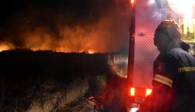 ΑΡΓΟΛΙΔΑ - Πυρκαγιά στους Μύλους του δήμου Άργους Μυκηνών εκδηλώθηκε το βράδυ της Τρίτης 4 Φεβρουαρίου 2020 από άγνωστη μέχρι στιγμής αιτία.
