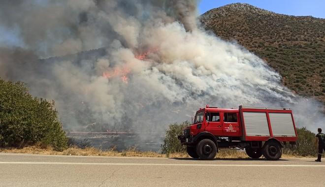 Σύμφωνα με αυτόπτες μάρτυρες, τα οχήματα της Πυροσβεστικής αντιμετώπισα δυσκολία την άντληση νερού
