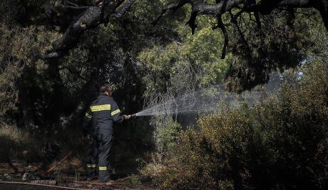Συνελήφθη 36χρονος με πέντε αναπτήρες σε περιοχή όπου εκδηλώθηκε φωτιά