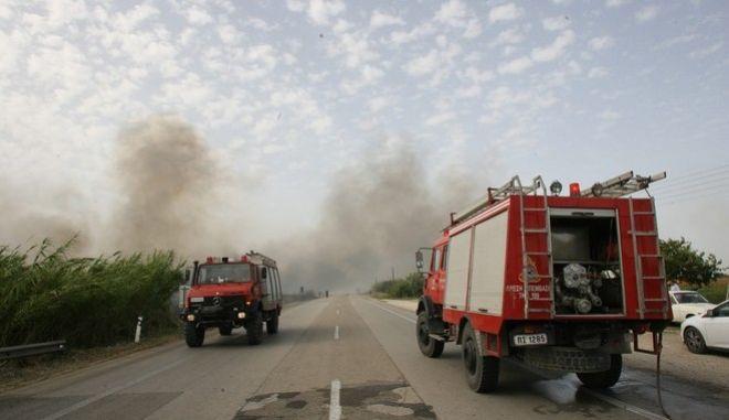 Φωτιά απείλησε αστικές περιοχές στον κάμπο της Ηλείας την Δευτέρα 11 Σεπτεμβρίου 2017. (EUROKINISSI/ILIALIVE.GR/ΓΙΑΝΝΗΣ ΣΠΥΡΟΥΝΗΣ)
