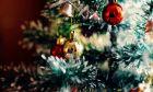 Δέντρο των Χριστουγέννων: από πού κρατά η σκούφια του