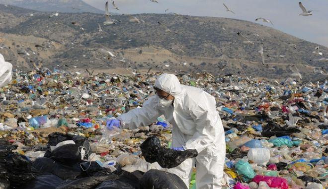 Εργάτες με ειδικές στολές ερευνούν σακούλες με σκουπίδια που περιέχουν ιατρικά απόβλητα νοσοκομείου και απορρίφθηκαν για τέταρτη συνεχόμενη φορά στον ΧΥΤΑ της Φυλής την Δευτέρα 16 Δεκεμβρίου 2013. (EUROKINISSI/ΚΩΣΤΑΣ ΚΟΜΙΝΗΣ)