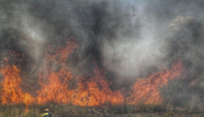 Πυρκαγιά σε χορτολιβαδική περιοχή (φωτό αρχείου)