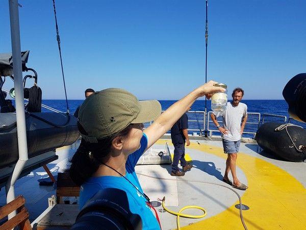 Οργώνει τις ελληνικές θάλασσες το Rainbow Warrior 3: Γεμάτη μικροπλαστικά η επιφάνεια