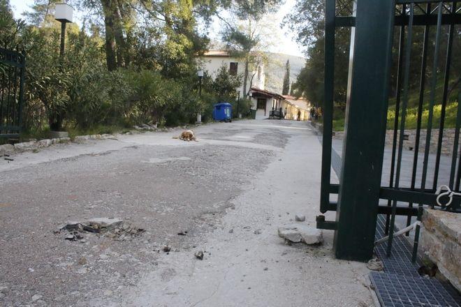 Εισβολή άγνωστης γυναίκας στον αρχαιολογικό χώρο της αρχαίας Επιδαύρου τα ξημερώματα της Πέμπτης 23 Μαρτίου 2017. Η άγνωστη γυναίκα έσπασε με το αυτοκίνητό της την πόρτα της εισόδου του αρχαιολογικού χώρου και συνελήφθη από την αστυνομία. (EUROKINISSI/ΒΑΣΙΛΗΣ ΠΑΠΑΔΟΠΟΥΛΟΣ)