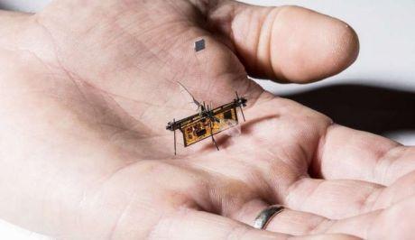 Πέταξε το Robofly, το πρώτο ασύρματο ρομποτικό έντομο