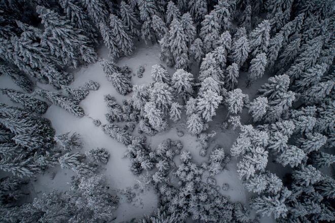 Χιόνια στο Περτούλι Τρικάλων