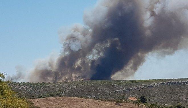 Πυρκαγιά σε δασική έκταση στην περιοχή Πούντα-Ζέζα του Λαυρίου, την Πέμπτη 16 Ιουλίου 2020